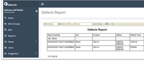 Defects Report Thumbnail