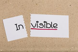 In_Visible_image